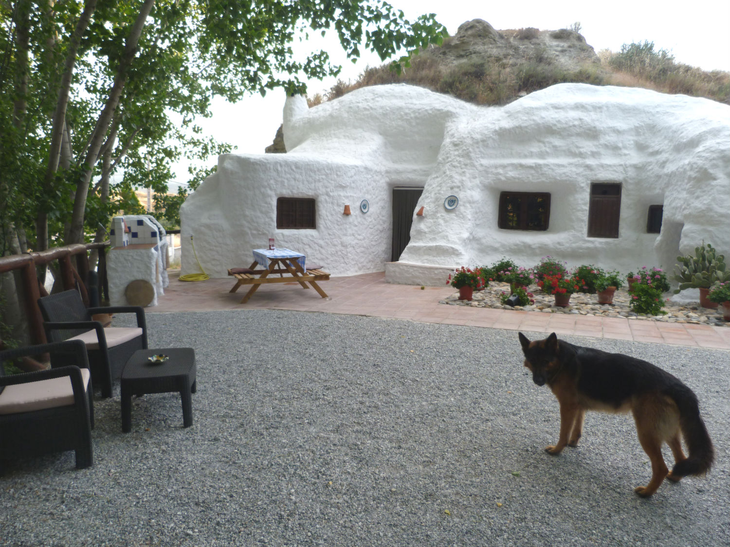 The cave hotel came with a dog.